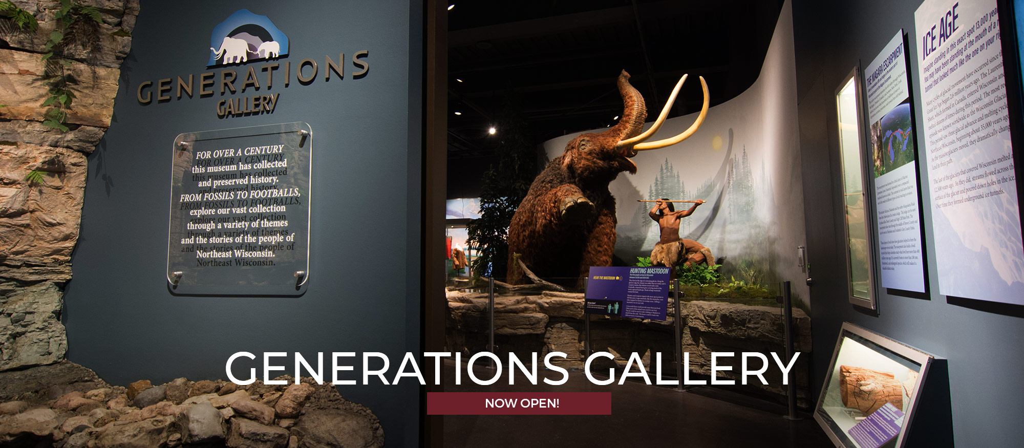 Photo of Generations gallery with mastodon and Title